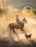 Gaucho on horseback and dog at sunset, Estancia Huechahue, Patagonia, Argentina, South America