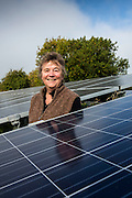 Lesley Bennett, chair of the Wiltshire Wildlife Community Energy at the Chelworth Solar array.