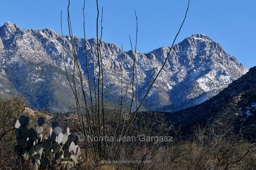 Snow caps a peak in the Santa Rita Mountains near Madera Canyon in the Coronado National Forest, Sonoran Desert, Green Valley, Arizona, USA.
