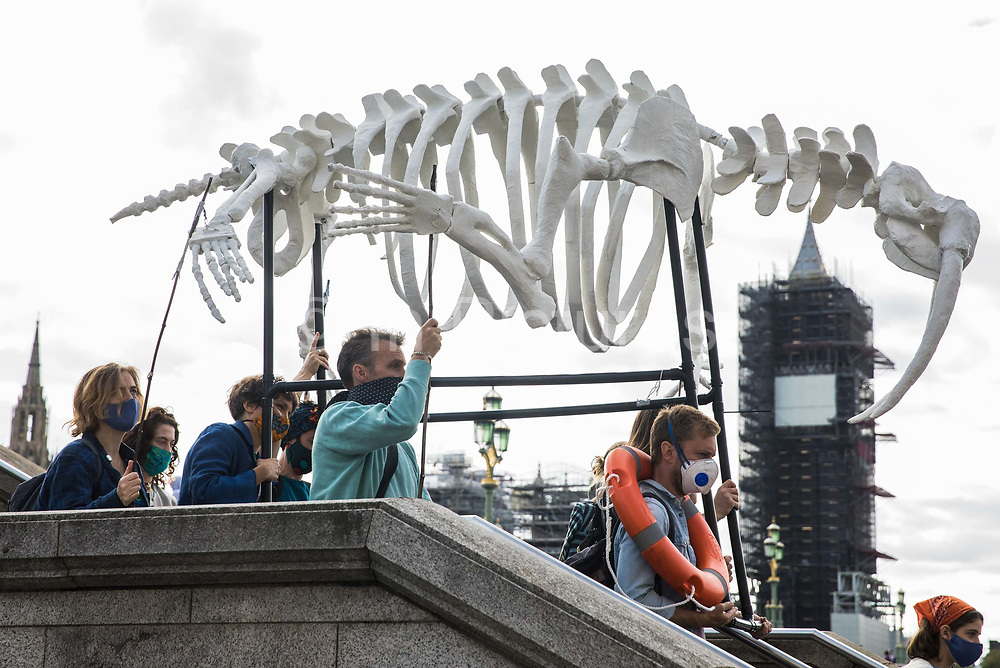 Climate activists from the Ocean Rebellion and Extinction Rebellion take part in a colourful Marine Extinction March on 6 September 2020 in London, United Kingdom. The activists, who are attending a series of September Rebellion protests around the UK, are demanding environmental protections for the oceans and calling for an end to global governmental inaction to save the seas.