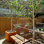 Garden for new build condo building