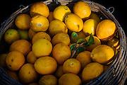Organic Lemons at a Farmers Market in Newcastle, Australia