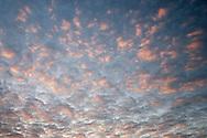 evening alpenglo lights cumulus clouds