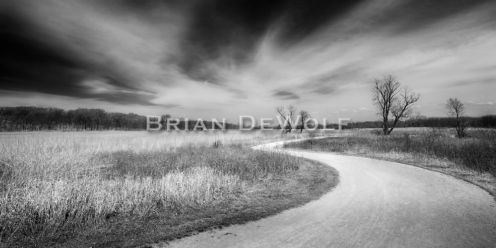 """At the horizon, the natural prairie in Illinois meets a dramatic sky. Aspect ratio is 1""""w x .5""""h."""
