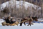 Horse drawn sled<br /> Darkhadyn Khotgor Depression<br /> Northern Mongolia<br /> winter