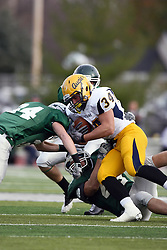 12 November 2011:  Nick Mark wraps up a traveling Benjamin Hodges  getting some assistance from Joel Backs during an NCAA division 3 football game between the Augustana Vikings and the Illinois Wesleyan Titans in Tucci Stadium on Wilder Field, Bloomington IL