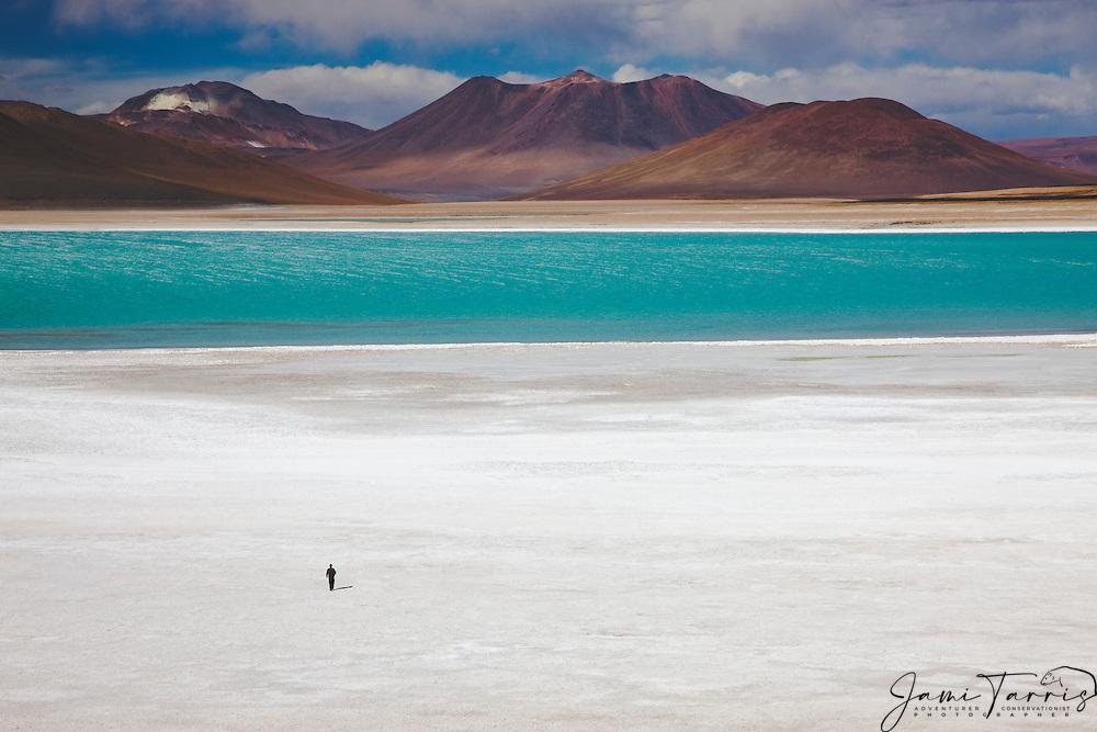 Man walking on salt pan of Laguna Verde at the foot of volcano Licancabur, southwestern Altiplano, Bolivia,South America