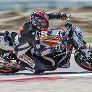 August 4, 2013 - Tooele, UT - Steve Rapp competes in Harley-Davidson XR1200 Race 1 at Miller Motorsports Park. Rapp won the race.
