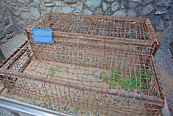 Tiger Cages Used For Political Prisoners By South Vietnamese