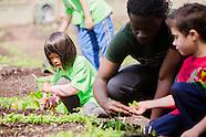 BBG Children's Garden Activities