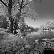 Black and white photo of tranquil scene on the Psel River in Ukraine