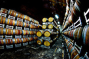 Wine barrels aging at the Carmel winery Rishon LeZion, Israel