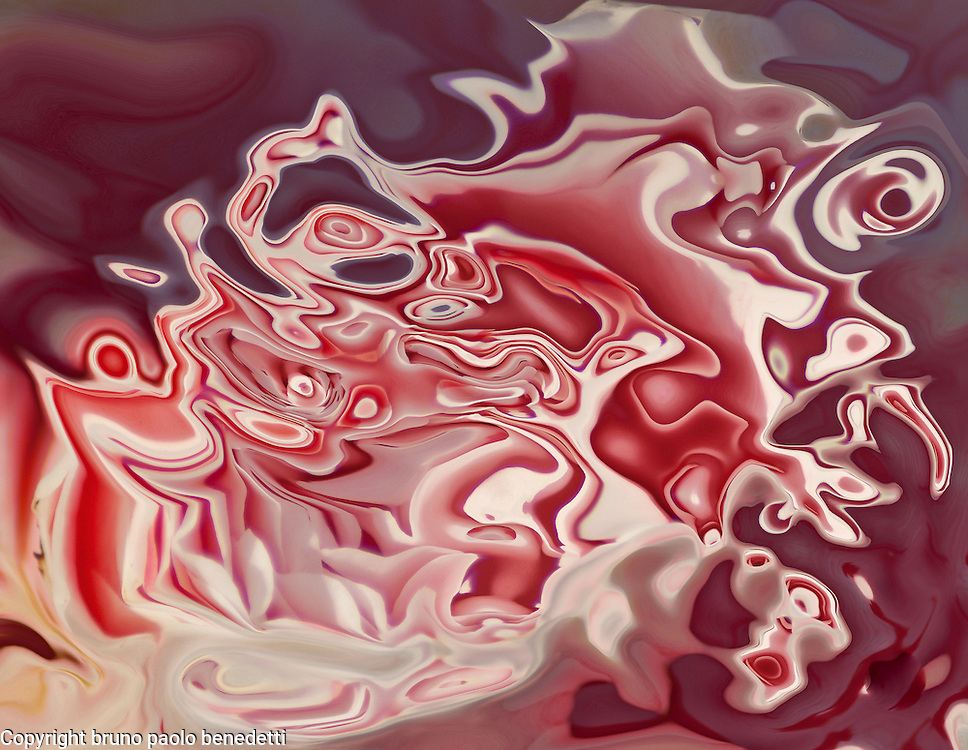 pink and white, fluid shape in pink color dominant with many shades and white tones on blurred background, colors of the spring.