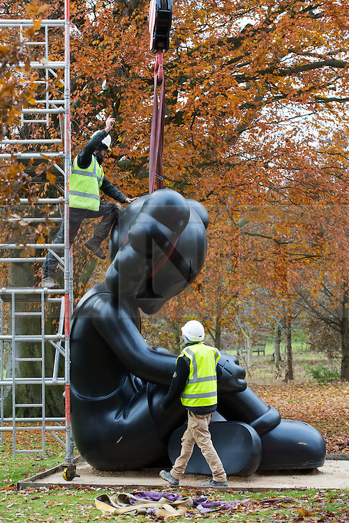 © Licensed to London News Pictures. 24/11/2016. Wakefield, UK. A sculpture by the artists KAWS titled 'Better Knowing' is deinstalled by sculpture technicians at the Yorkshire Sculpture Park in Wakefield, West Yorkshire. The American artist has had a collection of his sculptures at the park since early this year. Photo credit : Ian Hinchliffe/LNP