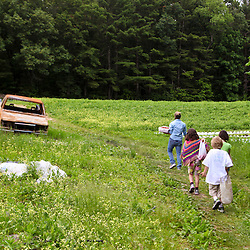 A woman and three children walk through a field after picking strawberries at Heron Pond Farm in South Hampton, New Hampshire.