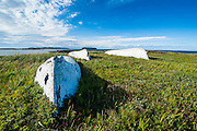 Reconstructed viking boats in the Norstead Viking Village and Port of Trade reconstruction of a Viking Age settlement, Newfoundland, Canada