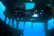 Wheelhouse, Doc Paulson, Grand Cayman