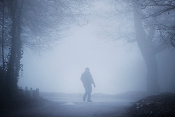 © Licensed to London News Pictures. 30/12/2016. Dorking, UK. A walker reaches the top of Box Hill on another day of fog and freezing temperatures. Photo credit: Peter Macdiarmid/LNP