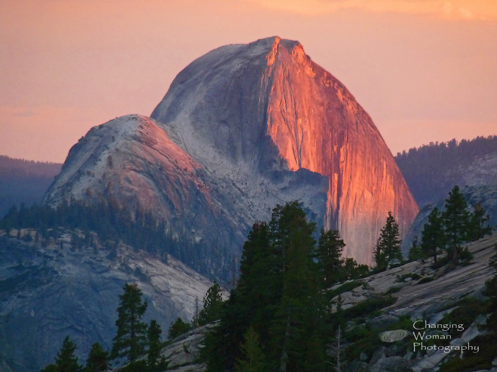North Dome's white granite glows pink with the setting sun, seen from Olmstead Point on the Tioga Road just west of Tenaya Lake in America's Yosemite National Park, California.  Shadowed pines appear in the foreground of this horizontal landscape image.