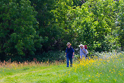 A couple stroll through the sunlit wildflowers on Hampstead heath in London. London, May 26 2019.