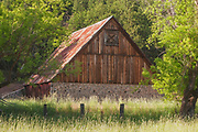 Horse Barn, Tall Grass, Genesee Valley, Genesee Valley Ranch, Sierra Nevada Mountains, Stone Walls, Shade Trees, Barbed Wire Fence