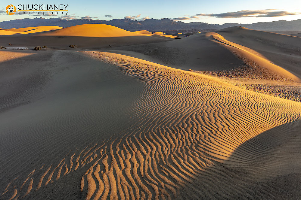 Ripples in the sand at Mesquite Sand Dunes in Death Valley National Park, California, USA