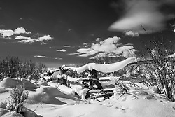 Buckrail fence, covered in snow, Jackson Hole, Wyoming