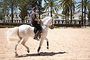 Rider training at the Royal Andalusian School of Equestrian Art (Real Escuela de Equetsre) Andalucia, Jerez, Spain
