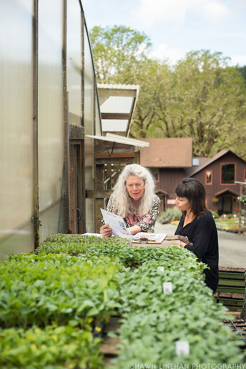 Alice Doyle of Log House Plants in Cottage Grove, Oregon.
