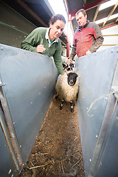 Kate and Ed Roswell at Hundleshope. Story on the farm in Peebleshire about the current state of women in farming.