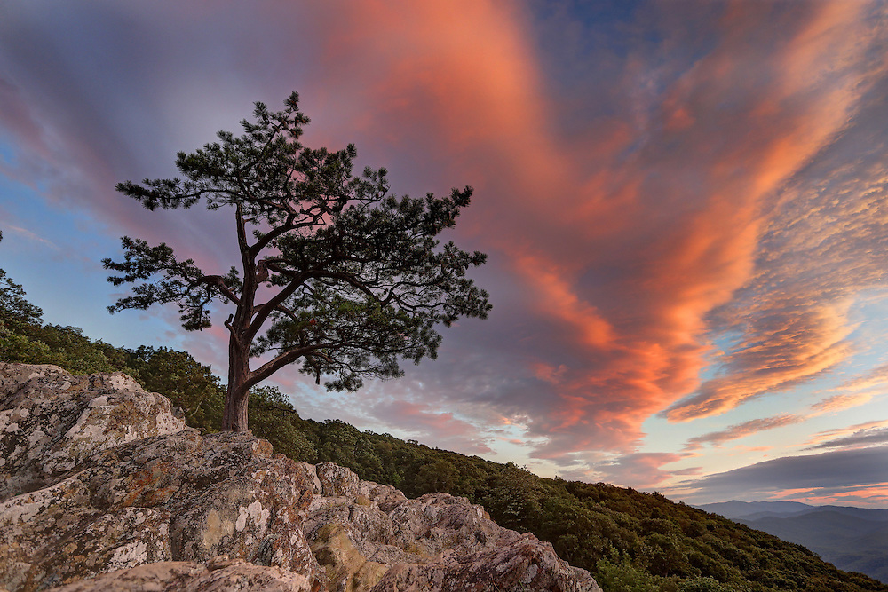 Ravens Roost scenic view located on Blue Ridge Parkway located in Nelson County, Virginia. Photo/Andrew Shurtleff
