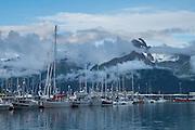 Misty mountain rising above Seward Small Boat Harbor, Seward, Alaska