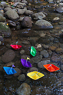 Origami paper boats in a stream in the forest, Maui, Hawaii, USA