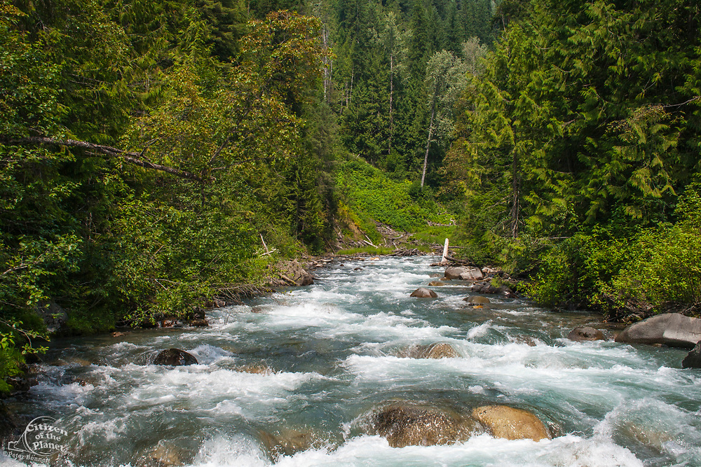 Taking cable car over Carpenter Creek on the Galena Trail, New Denver, Slocan Valley, West Kootenay, British Columbia, Canada