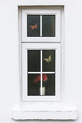 Flowers and butterflies through window, Dooagh, Achill Island, County Mayo, Ireland