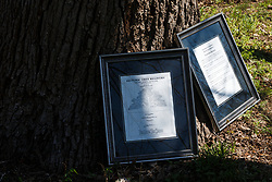 Tree dedication ceremony for  historic burr oak at Big Spring, Great Trinity Forest, Dallas, Texas, USA