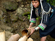 In the remote Akha Nuquie ethnic minority village of Ban Chakhampa, Phongsaly Province, Lao PDR, women's first task of the day is to collect water and carry it back to the village in traditional bamboo water carriers. One of the most ethnically diverse countries in Southeast Asia, Laos has 49 officially recognised ethnic groups although there are many more self-identified and sub groups. These groups are distinguished by their own customs, beliefs and rituals.