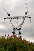 Stork's nests on a power pylon. Photographed in Portugal
