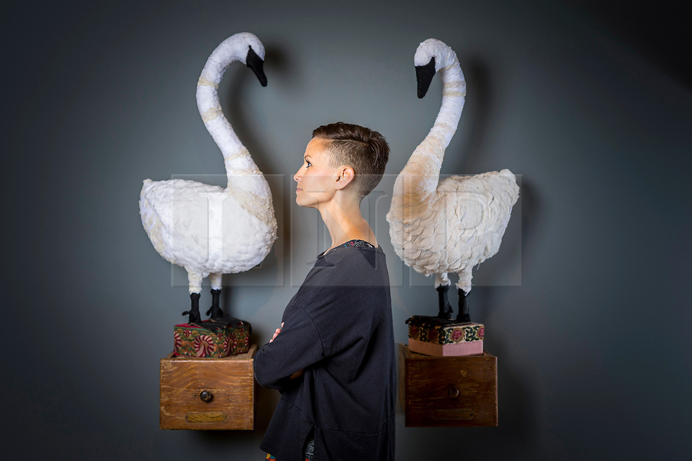 © Licensed to London News Pictures. 20/06/2018. Wakefield UK. Kerry chase look at two hand-sewn swans that form part of a new exhibition by British artist Mister Finch at Yorkshire Sculpture Park. More than 75 individual soft sculptures showcase Finch's masterful combination of up-cycled and new materials, from discarded wire, steel and wood, to vintage tapestries, cross stitch samplers, tablecloths, antique silverware and rescued cloth. The self-taught artist has drawn inspiration from British folklore, the historic Bretton Estate and Yorkshire wildlife to create his textile wonders. Finch's Gothic fairytale centres around the story of The Wish Post, a magical kingdom of woodland animals whose job it is to collect and sort other creatures' wishes, which are breathed into envelopes and posted in toadstool postboxes. Photo credit: Andrew McCaren/LNP