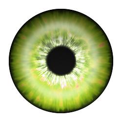 green yellow eye iris eye iris eye iris