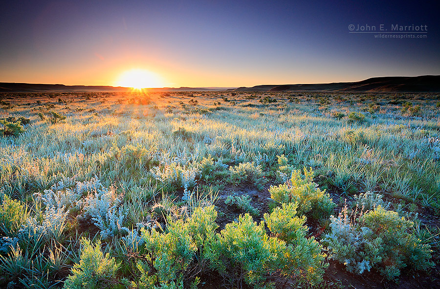 Sunrise on sage flats near Grasslands National Park, Saskatchewan, Canada on the Canadian prairies