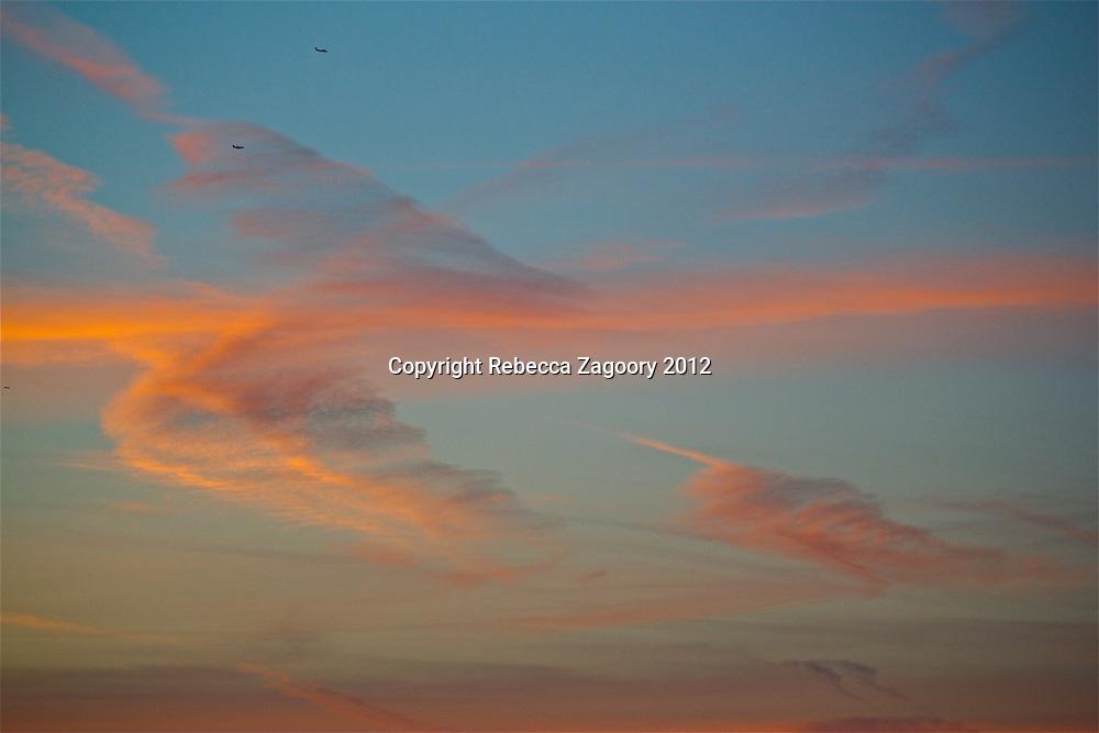 Feathered sky Santa Monica