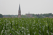 corn crop against a village tower Holland