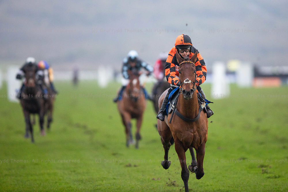 Ffos Las Racecourse, Trimsaran, Wales, UK. Friday 23 November 2018. Thor De Cerisy (jockey Harry Reed) on the way to winning the myracing.com Tips For Every Meeting Standard National Hunt Flat Race (Race 6)