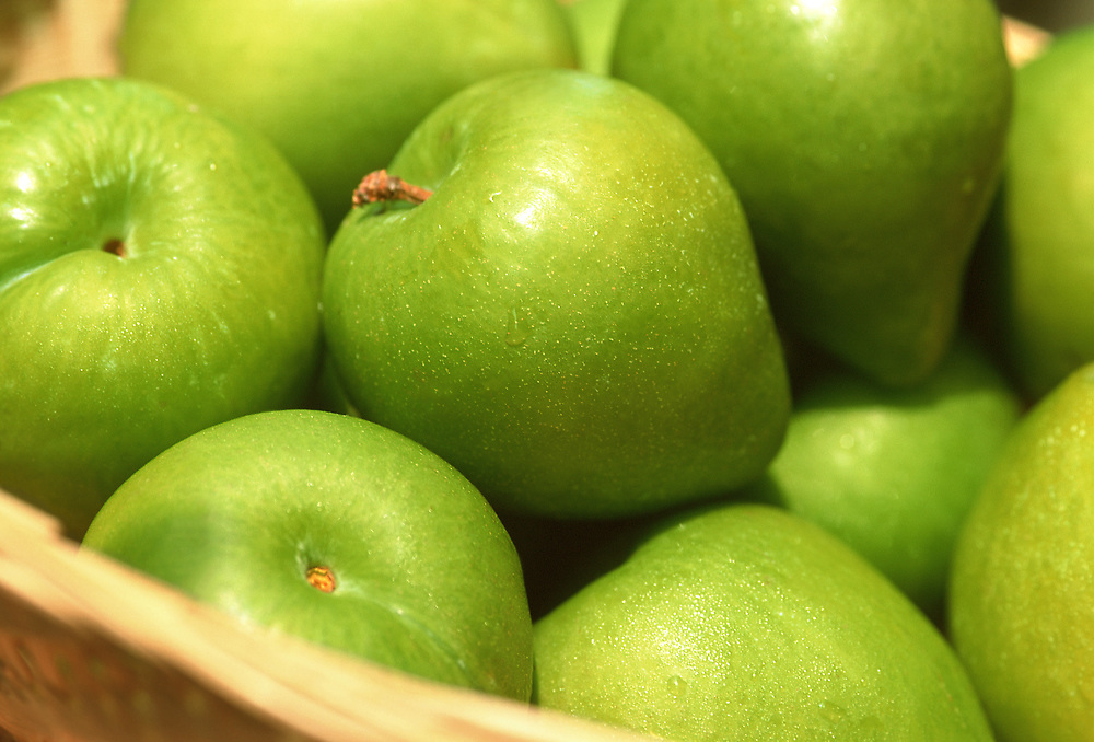 Close up selective focus photo of a group of Kelsey Plums in a basket