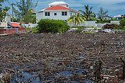 Mangrove destruction for housing<br /> Caye Caulker<br /> Ambergris Caye<br /> Belize<br /> Central America