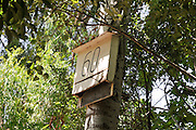 Bats Nesting box. Bats consume a large number of insects and are used as a natural and ecological pest control. By supplying these nesting boxes bats are lured to the desired area Photographed at the Hermon Stream Nature reserve (Banias) Golan Heights Israel