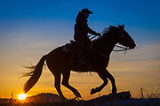 Cowgirl on riding across a ridge at sunrise on a ranch in northeastern Wyoming