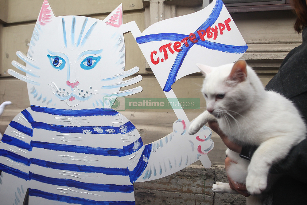 April 24, 2018 - Saint Petersburg, Russia - April 24, 2018. - Russia, Saint Petersburg. - Hermitage oracle cat Achilles near the cat cafe 'Cats Republic' during the arts marathon 'My love: football and cat! (Credit Image: © Russian Look via ZUMA Wire)