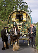 Shire horses pull 100-year-old gypsy caravan through country lanes, Stow-On-The-Wold, Gloucestershire, United Kingdom